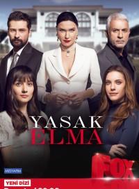 Запретный плод (турецкий сериал 2019) 1,2,3 сезон